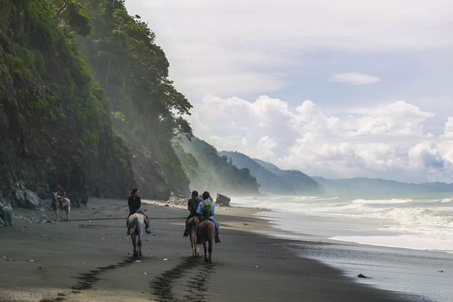 Randonnée à cheval | Surf Expedition Costa Rica