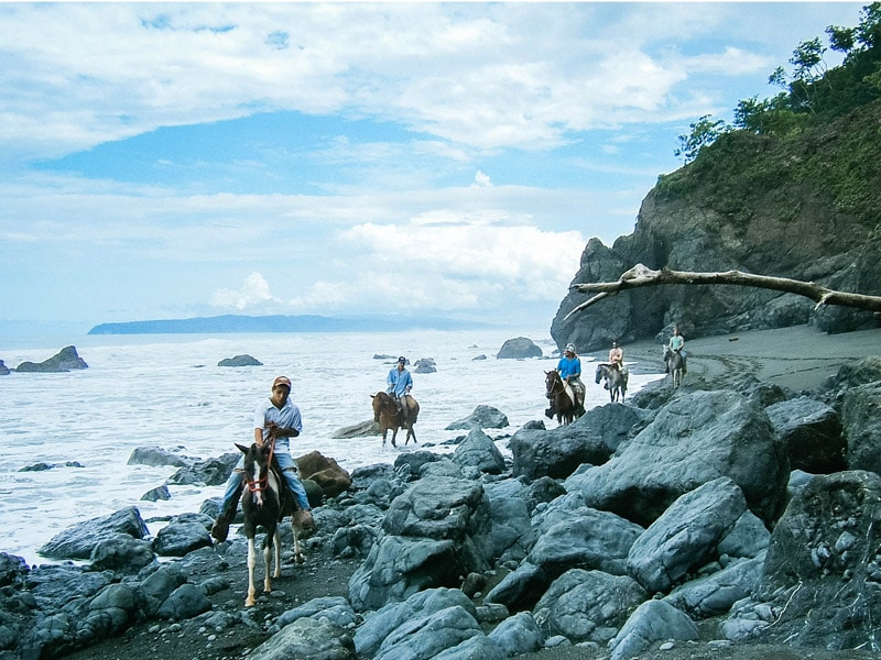 costa rica surf camp horseback riding