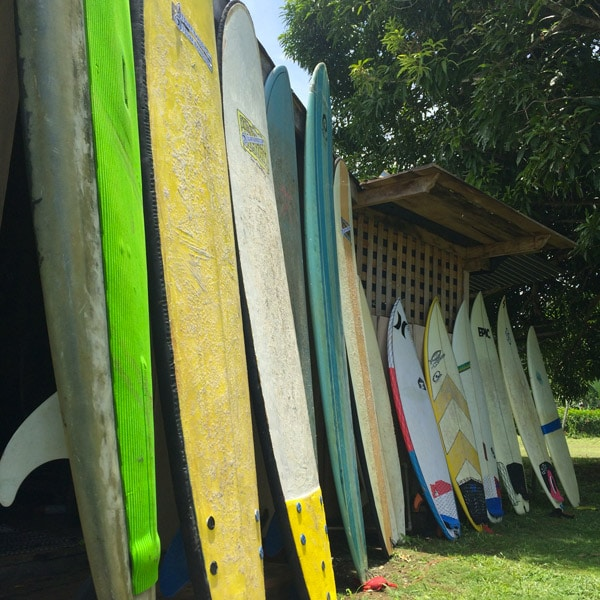 costa rica surf camp surfboards