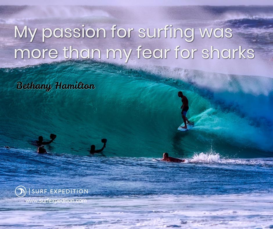 surf quote